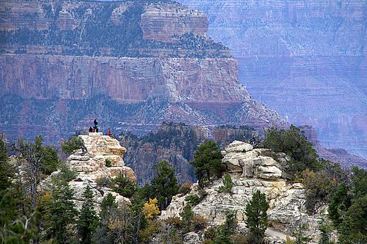 Canyon Majesty by Charlotte Schafer