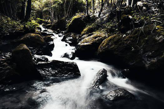 Canyon Stream by Digital Art Cafe
