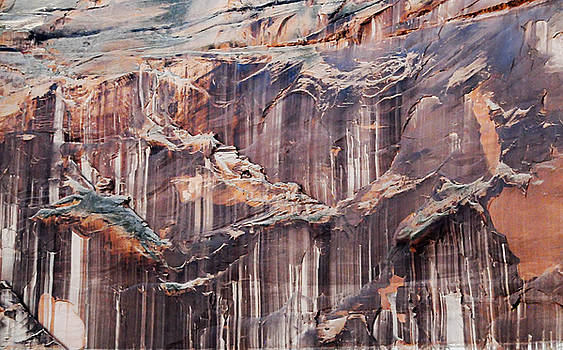 Canyon Wall Tapestry by Geraldine Alexander