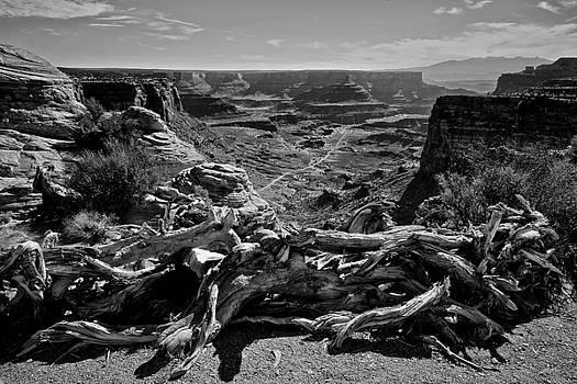 Canyonlands National Park by John Daly