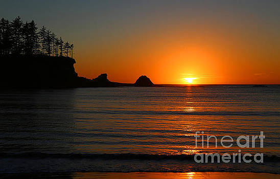 Cape Arago Sunset by Marty Fancy
