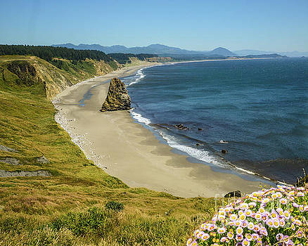Michael Tidwell - Cape Blanco on the Oregon Coast by Michael Tidwell
