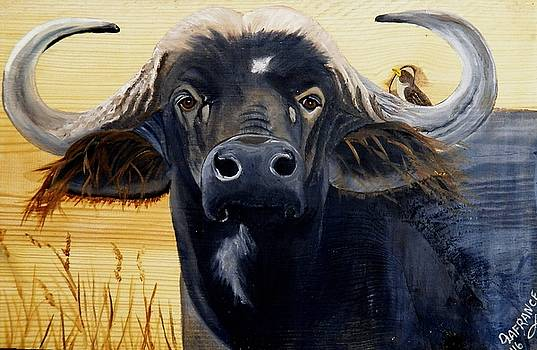 Cape Buffalo on Wood by Debbie LaFrance