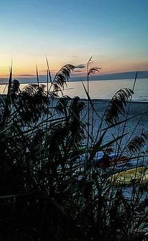Cape Cod Bay by Bruce Carpenter