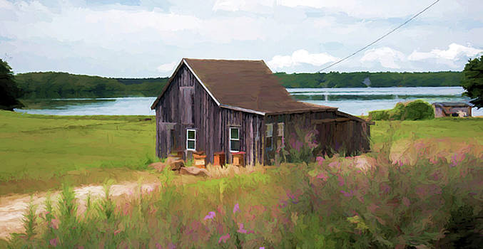 Cape Cod Bog House by Lee Fortier