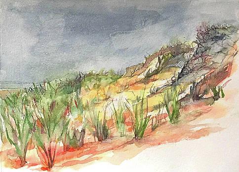 Cape Cod Dunes by Abbie Rabinowitz