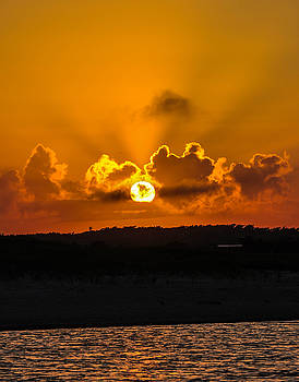 Cape Cod, MA 1 by Terepka Dariusz