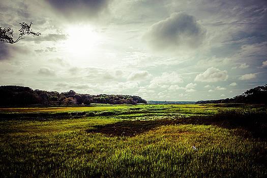 Cape Cod Marsh 1 by Frank Winters