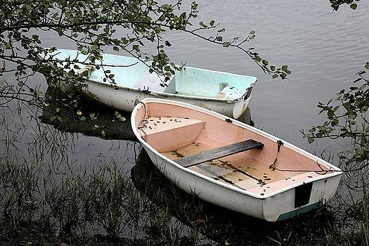 Cape Cod Pond by Carol Kinkead