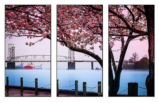 Cape Fear River Bridge Triptych by Karen Wiles