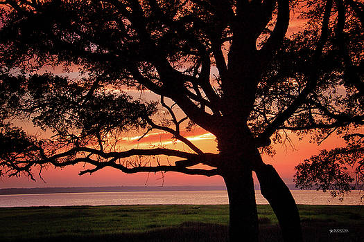 Cape Fear Sunset Overlook by Phil Mancuso