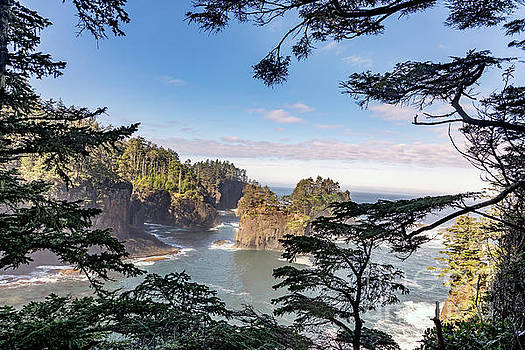 Cape Flattery Along the Pacific Coast in Washington by Brandon Alms
