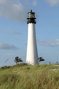 Cape Florida Lighthouse by Art Block Collections