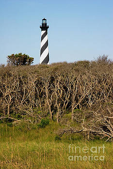 Jill Lang - Cape Hatteras in the Outer Banks