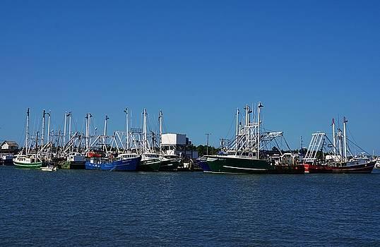 Cape May Fishing Fleet by Ed Sweeney