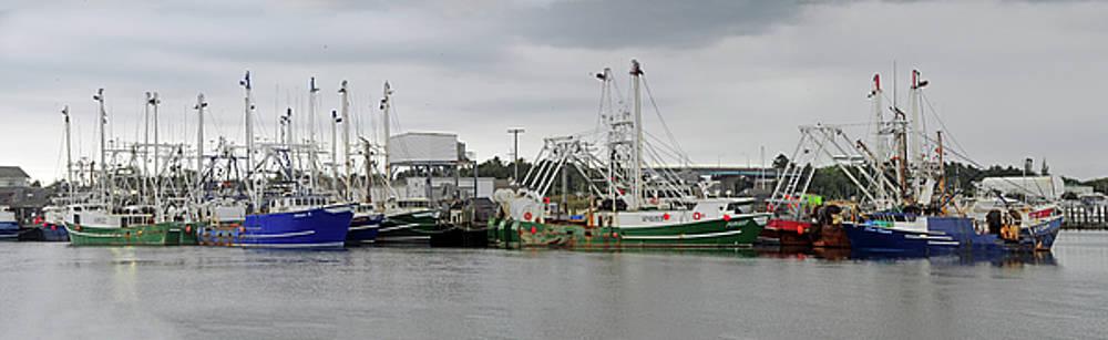 Cape May Fishing Trawlers by Dan Myers