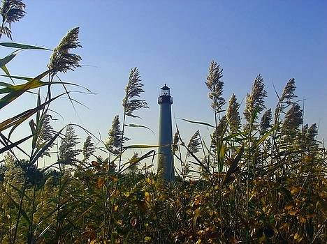 Kevin  Sherf - Cape May Light Autumn