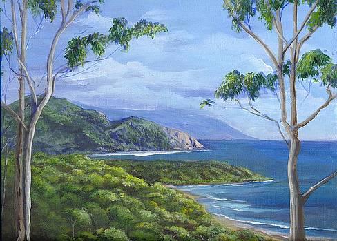 Cape Tribulation by Robynne Hardison