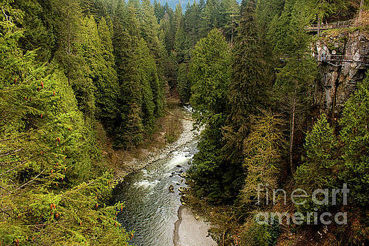Capilano River by Ivete Basso Photography