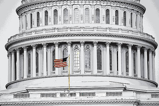 Capitol Flag by John Schneider