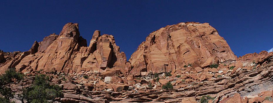Capitol Reef Red Cliffs by Craig Butler