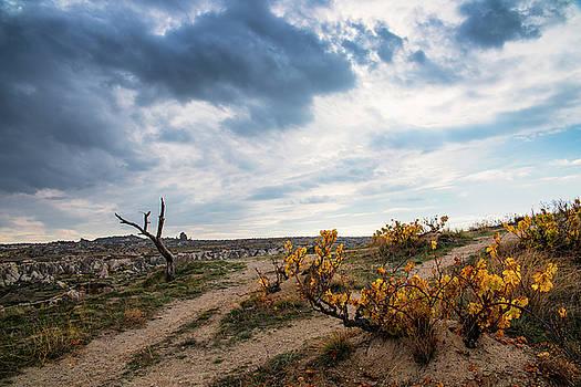Cappadocia scenery by Yuri Santin