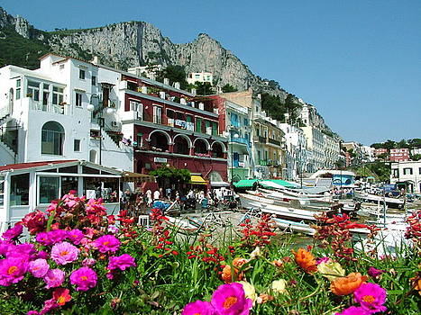 Capri by Donna Corless