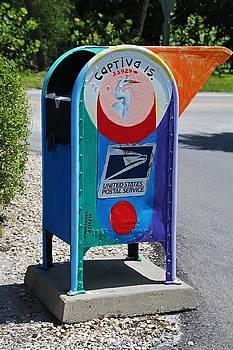 Captiva Island Mailbox- vertical by Michiale Schneider