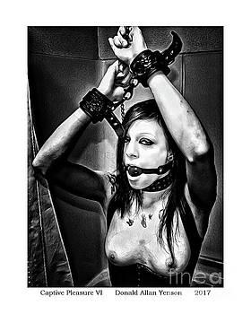 Captive Pleasure VI by Donald Yenson