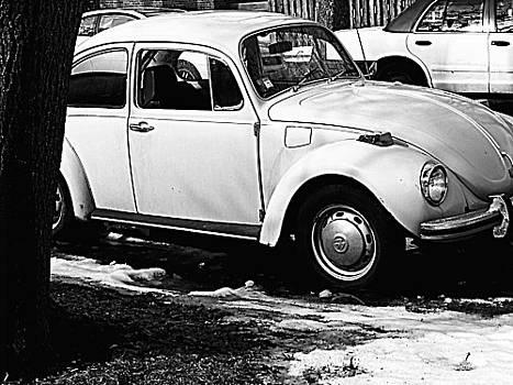 Car by Victoria Serrano