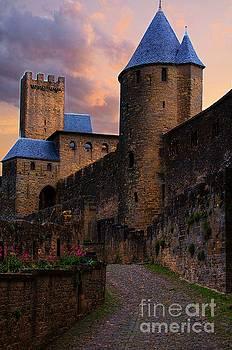 Carcassonne by Daniela White