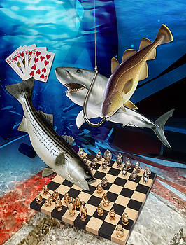 Card Shark And One On The Hook by Marvin Blaine