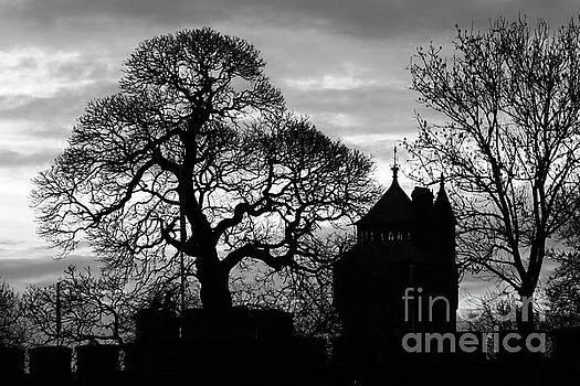 James Brunker - Cardiff Castle Winter Silhouettes