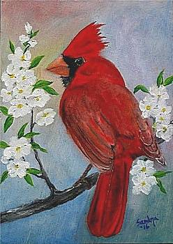 Cardinal and Flowers by Sandra Maddox