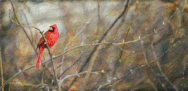 Cardinal and Spring Buds by Diane Lindon Coy