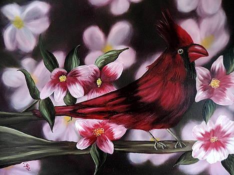 Cardinal by Dianna Lewis