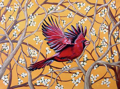 Cardinal in Flight by Teresa Wing