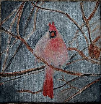 Cardinal in Snow by Andrea Harston
