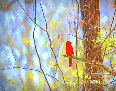 Cardinal in the Forest by Kerri Farley