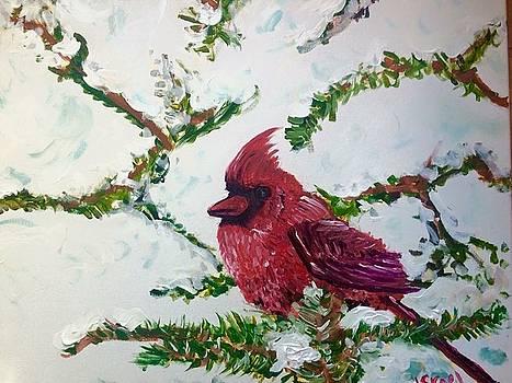 Cardinal by Israel Fickett