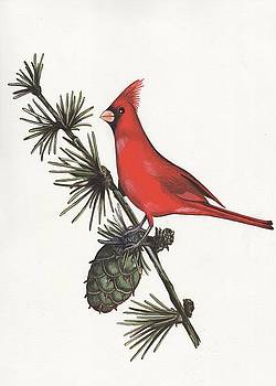 Cardinal by Jeanne Rehrig