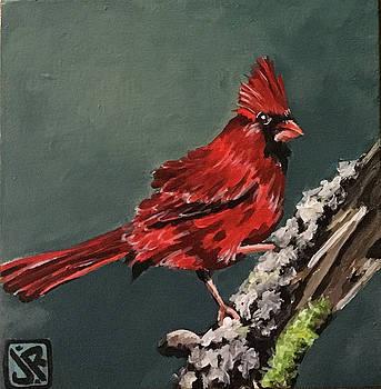 Cardinal by Julie K Ross