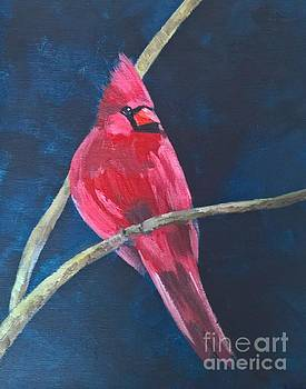 Cardinal by Lisa Dionne