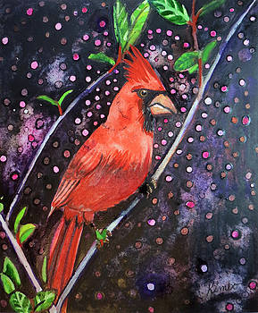 Cardinal Magic by Kimbo Jackson