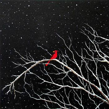 Cardinal on Snowy Night by Sabrina Zbasnik