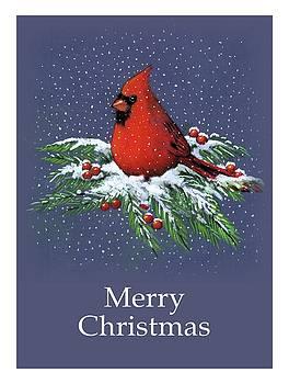 Joyce Geleynse - Cardinal on Snowy Pine Branches, Merry Christmas