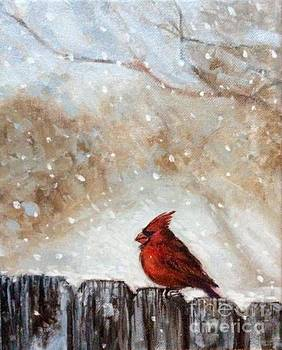Cardinal on the old fence by Hilary England