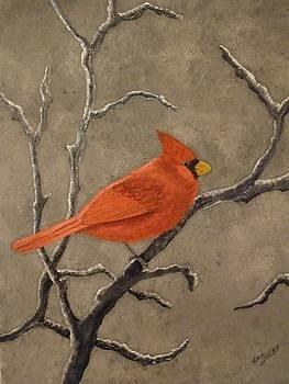Cardinal by Ron Sargent