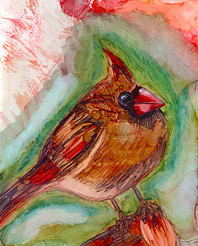 Cardinal by Shann Ferreira