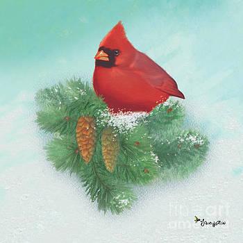 Cardinal by Tracy Herrmann